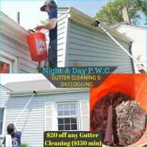 Gutter Cleaning Coupon